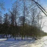 зимний пейзаж :: megaden774