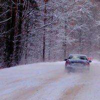 по лесной зимней дороге :: Александр Прокудин