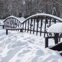 В парке зима. :: Геннадий