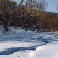 До дна промёрз лесной ручей... :: Лесо-Вед (Баранов)