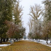 Осень и зима :: Анастасия Михалева
