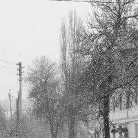 Снегопад :: Анна