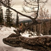 На природе... :: Сергей Герасимов