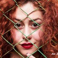 солнечная девушка :: Ani Zargaryan