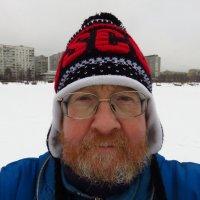 Всем категорический привет! :: Андрей Лукьянов