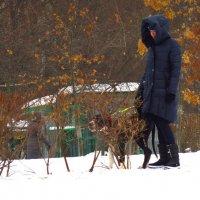 Неожиданный для снимающего эффект в феврале :: Андрей Лукьянов