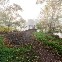 Уходящим в осень... :: Павел Петрович Тодоров