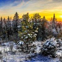 Закатное солнце Чекерила. :: Вячеслав Ложкин