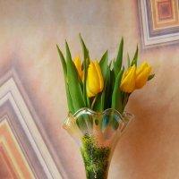 Жёлтые тюльпаны :: Nina Yudicheva
