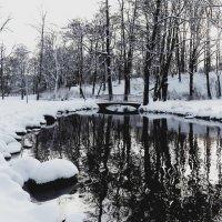 Зимний парк :: Александр Михайлов