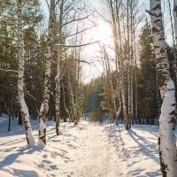 Мороз и... :: Дмитрий Костоусов