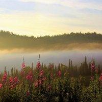 Полоса тумана :: Сергей Чиняев