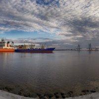 Вид на залив :: Василий Голод