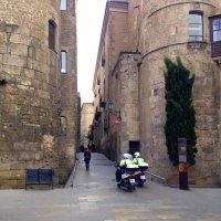 Январь в Барселоне :: Елена