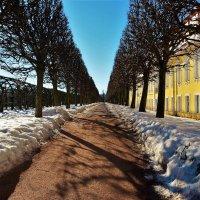 По аллее Верхнего сада... :: Sergey Gordoff