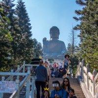 В гости к Будде.. :: Виктор Льготин