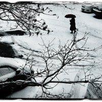 Зимнее утро 2 :: Цветков Виктор Васильевич