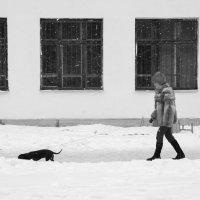 Прогулка в непогоду :: Татьяна Копосова