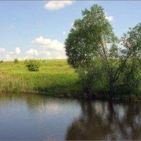 В летний день у пруда... :: марк