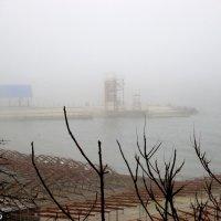 Туман над морем :: Нина Бутко
