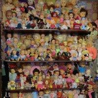 Коллекция кукол... :: Владимир Павлов