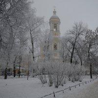 Князь-Владимирский собор :: Наталья Левина
