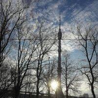 солнце,мороз и ТВ :: Олег Лукьянов