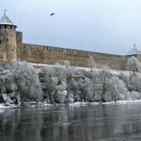 Ивангородская крепость :: veera (veerra)