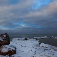 На берегу Финского залива :: Alex