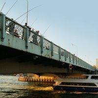 Рыбаки (повседневная жизнь Стамбула) :: Юлия Фотолюбитель