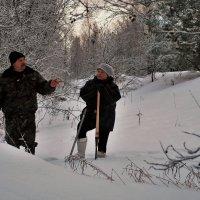 В лесу :: Николай Масляев