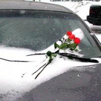 С днём Святого Валентина! :: Владимир Драгунский