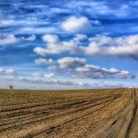 Облака, белогривые лошадки... :: Игорь Карпенко