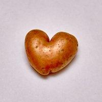Любовь-картошка :: Николай Николенко