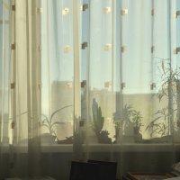 Свет и тени :: Жанна Литуева
