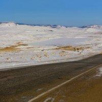 Дорога в Тажеранской степи :: Анатолий Иргл