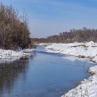 Протока от реки Кутань :: Игорь Сикорский