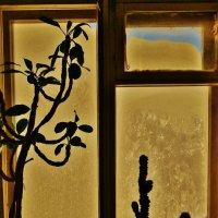 Окно , а за окном .... :: Святец Вячеслав