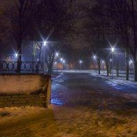 Ночной парк :: leo yagonen