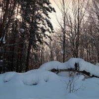 В сказке зимней.. :: Андрей Заломленков