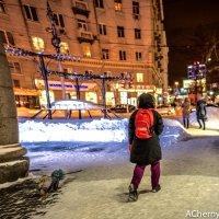 Девочка с собачкой :: Андрей Чернышов