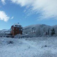 Февральский снег :: Виктория Попова