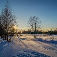 Зимний пейзаж 3 :: Андрей Дворников