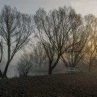 Пробуждение :: Sergey Kuznetcov
