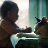 Одна спокойная минутка :: Вера Сафонова