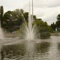Комсомольский пруд :: Татьяна Са