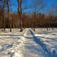 Солнечная дорожка... :: Sergey Gordoff