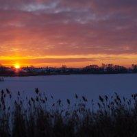 Морозное утро :: Геннадий Федоров