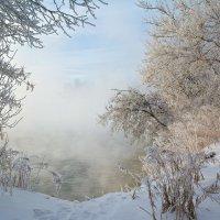 Морозное дыхание. :: Анатолий 71
