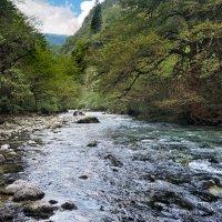 Абхазия река Бзыбь :: Денис Масленников